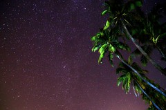 Ngapali Sky (likeslimes) Tags: sky beach star astrophotography palmtree myanmar nightsky ngapali rahkine