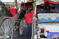 Cowpoke Cab Stand (MPnormaleye) Tags: arizona urban horse woman southwest phoenix wheel rural wagon coach cowboy desert pony utata scottsdale utata:project=tw458