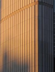 Toronto City Hall-11 (josullivan.59) Tags: travel light sunset shadow wallpaper urban orange toronto ontario canada detail texture geometric architecture downtown day skyscrapers clear minimalism lightanddark artisitic torontocityhall nicelight 3exp canon6d