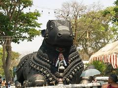 P3114835 (reshchikov) Tags: india karnataka chamundi