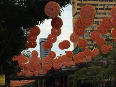 China Town #1 (Fuyuhiko) Tags: china new 3 town singapore year  lunar    mariamman