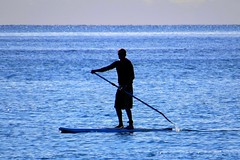 Long Bay Beach - Jan 2015 (SKR_Photography) Tags: newzealand beach bay long surf january earlymorning auckland nz 8am downunder eastcoast silouettes longbay surfsup 2015 landofthelongwhitecloud dogsonanodogbeach