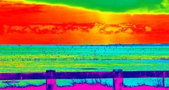 Weniger ist mehr (Meer)... (lichtflow.de) Tags: color fun meer dnemark farbe nordsee bunt lakolk