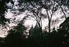 New York Minute (Laura-Lynn Petrick) Tags: sunset sky usa sunshine skyline kids youth america portraits sunrise cityscape view manhattan young smoking brooklynbridge americana manhattanskyline empirestatebuilding femmes newyorksubway centralparknyc newyorkmetro newyorkminute centralparkatnight newyorksunset centralparkview newyorksunrise lauralynnpetrick portraitsinnewyork manhattanskylinesunset lauralynnpetrickportraits lauralynnpetrickbrooklyn lauralynnpetricknewyorkcity lauralynnpetrickusa newyorkcityallhours