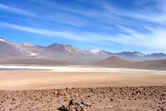 Salar de Uyuni - (henriquepeq) Tags: flamingos salar sal deserto bolívia uyuni