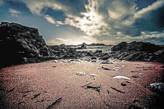 Don't just do something, sit around instead (NikNak Allen) Tags: longexposure sea sky sun seascape beach water clouds coast sticks sand rocks pov stones low plymouth blues devon reds heybrookbay magiccloth