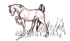 horse1aaaaaaaaaaa (Artist_Essam) Tags: horse pencil ink sketch drawing