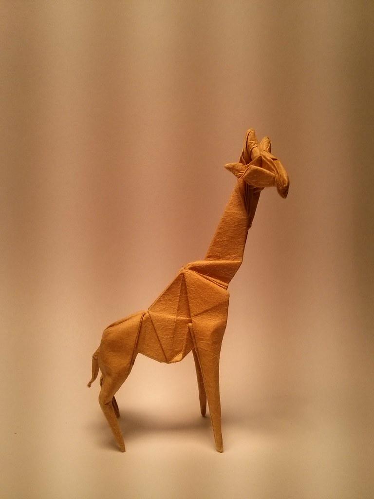 Hideo Komatsu Origami Giraffe Diagram Wire Data Schema The World S Best Photos Of And Flickr Hive Mind Rh Hiveminer Com Weasel Complex Diagrams