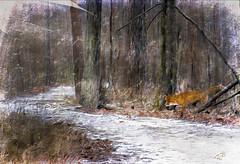 Snowy Path (Terry Pellmar) Tags: trees winter snow texture woods digitalart digitalpainting fox hypothetical artdigital shockofthenew trolled awardtree magicunicornverybest trollieexcellence exoticimage netartii