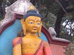 Buddha Kathmandu