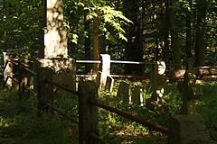 IMG_7614 (RARstudios) Tags: newhopecemetery abandoned cemetery rarstudios newhope