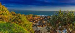 -gold coast australia (rod marshall) Tags: pinksunrise snapper pinksunrisesnapper goldcoast snapperrocks australianholidayplayground