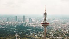 Frankfurt Skyline (Niklas W.) Tags: frankfurt ffm sky summer skyline frankfurtammain architektur apsc skyscraper landscape landschaft land landschaften landmark hessen himmel europa europaturm sony sonya6300 sonyflickraward cityscape city bigcity