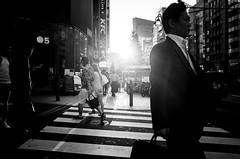.criss cross. (Shirren Lim) Tags: street tokyo shinjuku monochrome people crossroads japan ricoh graphic lines abstract outdoor symmetry sunset flare bw city light