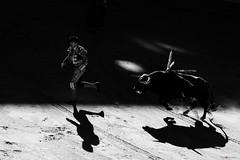 Sol y Sombra 2 (Fotomondeo) Tags: toro toros plazadetoros corridadetoros bull bullfight bullfighter bullring matador torero hoguerasdesanjuan fogueres alicante alacant spain espaa