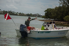 IMG_6794 (Florida Sea Grant) Tags: coral kids youth keys snorkel gulf florida dive sponge keyswest mahoganyyouth