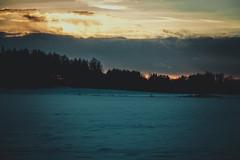(Jori Samonen) Tags: trees winter sunset snow clouds finland helsinki viikki