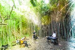 Secret Garden (Nicola Malaguti Photographer) Tags: secretgarden teatrodellimprovviso