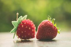 Sweet strawberries (RoCafe) Tags: macro opposites natural handmade felt soft nikkormicro105f28 nikond600