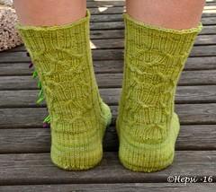 2016-07-26 013 (hepsi2) Tags: socks sukat sukkia tds2016