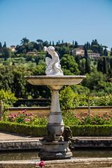 _DSC3802 (Dario Morelli) Tags: boboli pitti giardini palazzo firenze maggio 2016