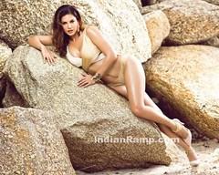 Sunny Leone Latest Photoshoot for Manforce Calender 2016-17 (shaf_prince) Tags: 2016 actress bikini bollywood fashion india lingerie magazine manforcecalender sunnyleone