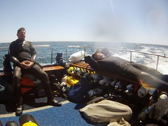 18 July 2016 - Scillies Trip PICT0218 (severnsidesubaqua) Tags: scillies scilly scuba diving