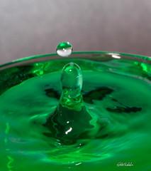 Water Art (Rick Woehrle) Tags: rick woehrle water droplets photography waterart rickwoehrlephotography rickwoehrle waterdroplets