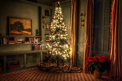 2013 12 14 Wilcox Hotel Aiken-hristmas (gaprunella) Tags: christmas ho
