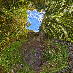 An Bhlaosc (the shell) (TJ.Photography) Tags: old trees ireland sky panorama irish sun green galway church nature vertical architecture forest high ancient woods ruins natural unique surreal sunny landmark medieval architectural exotic historical dreamy greenish isolate