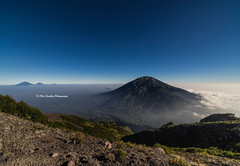 Mount Merbabu. (Ollie Smalley Photography (OSP)) Tags: travel blue sea sky holiday mountains west travelling tourism nature clouds trekking walking indonesia lens landscape outdoors volcano islands java rocks southeastasia view hiking sony horizon sightseeing perspective wideangle nopeople backpacking vegetation huge vista handheld geology westjava viewpoint volcanic indo slope clearsky distant osp geological uwa mountainous naturallandscape travelphotography ultrawideangle 14mm merbabu samyang mirrorless a7r mountmerbabu samyang14mmf28 olliesmalleyphotography samyang14mmf28mf ilce7r