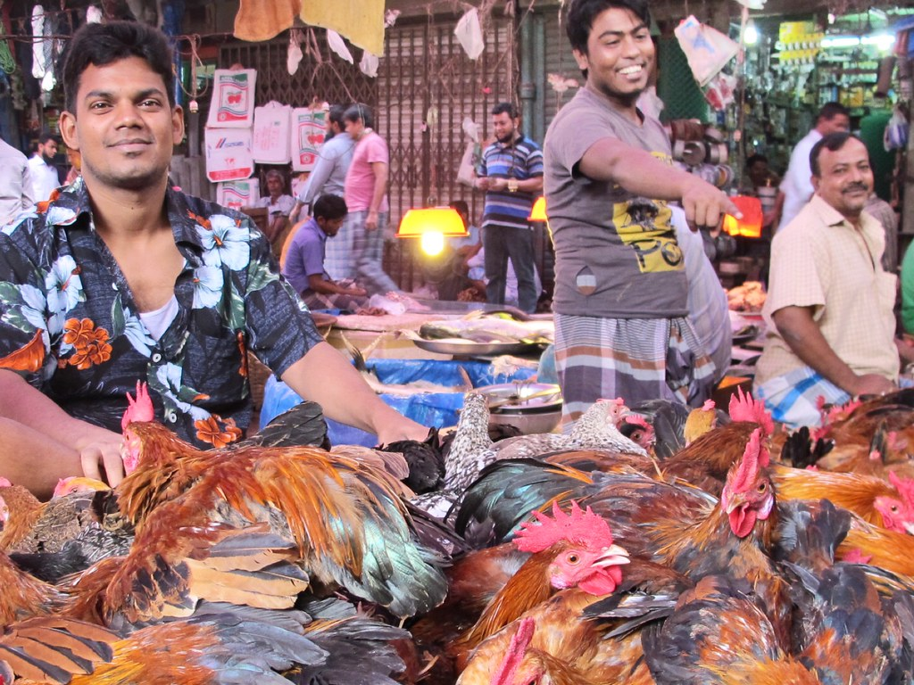 The World's most recently posted photos of dhaka and markets