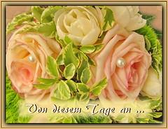 Von diesem Tage an / From this day on (Martin Volpert) Tags: wedding flower fleur rose christ god jesus flor pflanze bible blomma christianity blume bibbia fiore blte blomst virg christus lore biblia bloem gott blm iek floro kwiat flos ciuri bijbel schpfung kvet kukka cvijet flouer glauben christentum blth evangelium cvet zieds is floare blome iedas bibelverskarte hochzeitsgesteck mavo43