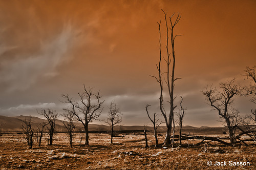 Photo - Jack Sasson - Desolation Row - 1st Place - Scenery