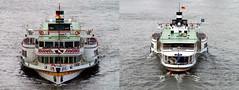 Goethe (Rolf H.) Tags: ship paddle cologne kln rhine steamer rhein schiff goethe kd klndsseldorfer raddampfer fahrgastschiff sachsenberg schaufelradschiff 04200370