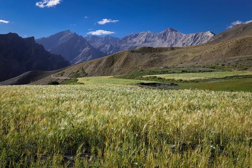Ladakh