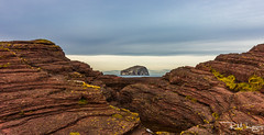 Bass Rock Surrounded by Sandstone (Rory Marland) Tags: longexposure winter sea cold sunshine canon landscape scotland sandstone wind wideangle seacliff northsea f11 bassrock eastlothian 1635mm 600d