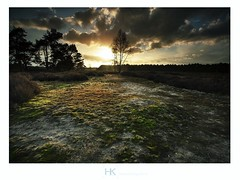 Spring is in the air (hknatuurfoto (Hans Koster)) Tags: longexposure light sunset color netherlands landscape licht spring zonsondergang nederland lente moods brabant landschap kleur sfeer leefilter maashorst