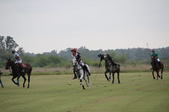 Friendly and Family Polo Week @Buenos Aires