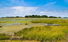 Morbihan_Golfe du Morbihan_Les marais de Séné_Le Hézo (Mathieu Breizh) Tags: france les de landscape brittany europe du breizh le gr paysage marais morbihan bzh golfe gr34 sené hézo
