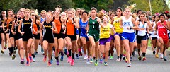 They're Off! (Bill Morson) Tags: sports sport race outdoor competition run highschool crosscountry compete competitors highschoolsports teamsport femaleathletes morson highschoolathletics highschoolathletes girlathletes girlscrosscountryrace billmorson