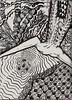 The Leap (molossus, who says Life Imitates Doodles) Tags: she zia zentangle zendoodle zentangleinspiredart