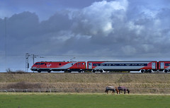 91124 Flys By Hensall in the New Virgin Trains East Coast Colours... (Michael 43123) Tags: new electric speed 22 coast br rail class east virgin british locomotive 91 intercity panned livery ecml hensall 91124