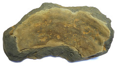 Early medieval pot (interior) (Welcome to The PAST) Tags: gold hammered roman brooch medieval celtic viking flint saxon scraper neolithic ironage fibula romanobritish metaldetecting stater knapped earlybronzeage samianware metaldetectingfinds
