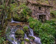Molin (ton21lakers) Tags: rio canon agua asturias molino tamron too escandon quiros