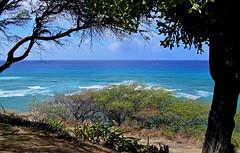 Somewhere, beyond the Sea ... (jcc55883) Tags: hawaii oahu kuileicliffs diamondheadroad ocean pacificocean horizon nikon nikond3200 d3200