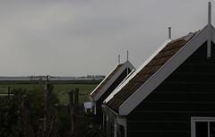Marken2016-7050 (Jeannot56) Tags: nl nederland noordholland marken