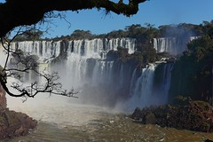 IMG_0524 IMG_0545 The Iguazu falls and a tree (Rodolfo Frino) Tags: tourism adventure thebesttenphotos thebest10photos thebestphotos travelagency aventura agenciadeviajes iguazuriver thebest10waterfalls thebesttenwaterfalls thebestwaterfall argentinianwaterfalls iguazufalls iguazu rodolfofrino