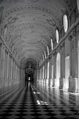 La Venaria Reale (alice 240) Tags: venariareale italia europa piemonte tourism travel europe bw alice240 italy castle architecture light nikon monochrome art blackwhite cinema film dream alicealicjacieliczka dark flickr blackandwhite atelier240art vintage reflections afotando simplysuperb nikonflickraward