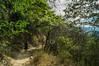 DSC03169 (Braulio Gómez) Tags: barrancadehuentitã¡n biodiversidad caminoamascuala canyon canyonhuentitan faunayflora floresyplantas guadalajara jalisco mountainrange naturaleza sierra senderismo paisaje barrancadehuentitán barranca huentitán ixtlahuacandelrío méxico guardianesdelabarranca
